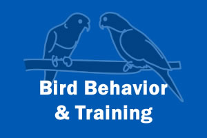 Bird Behavior & Training